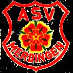 ASV-logo-transp.